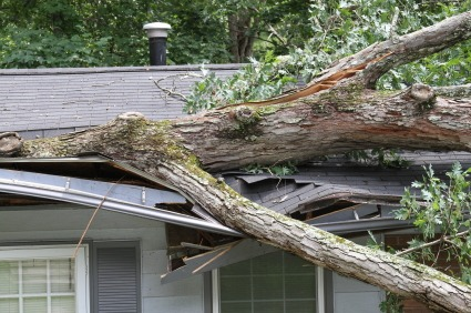 iStock TreeCrashHouseXSmall Tips to Help You File a Home Insurance Claim