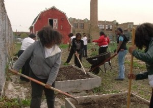 CFA Farm 300x212 Catherine Ferguson Academy – A Detroit Success Story