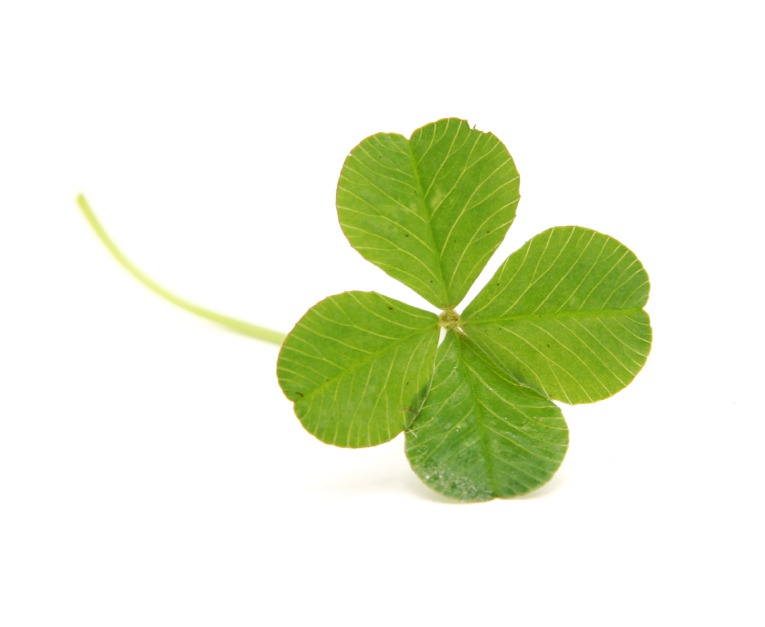St. Patrick's Day Safety Tips - Quicken Loans Zing Blog