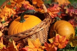 iStock 000017662150XSmall 300x199 Throw a Festive Fall Harvest Party