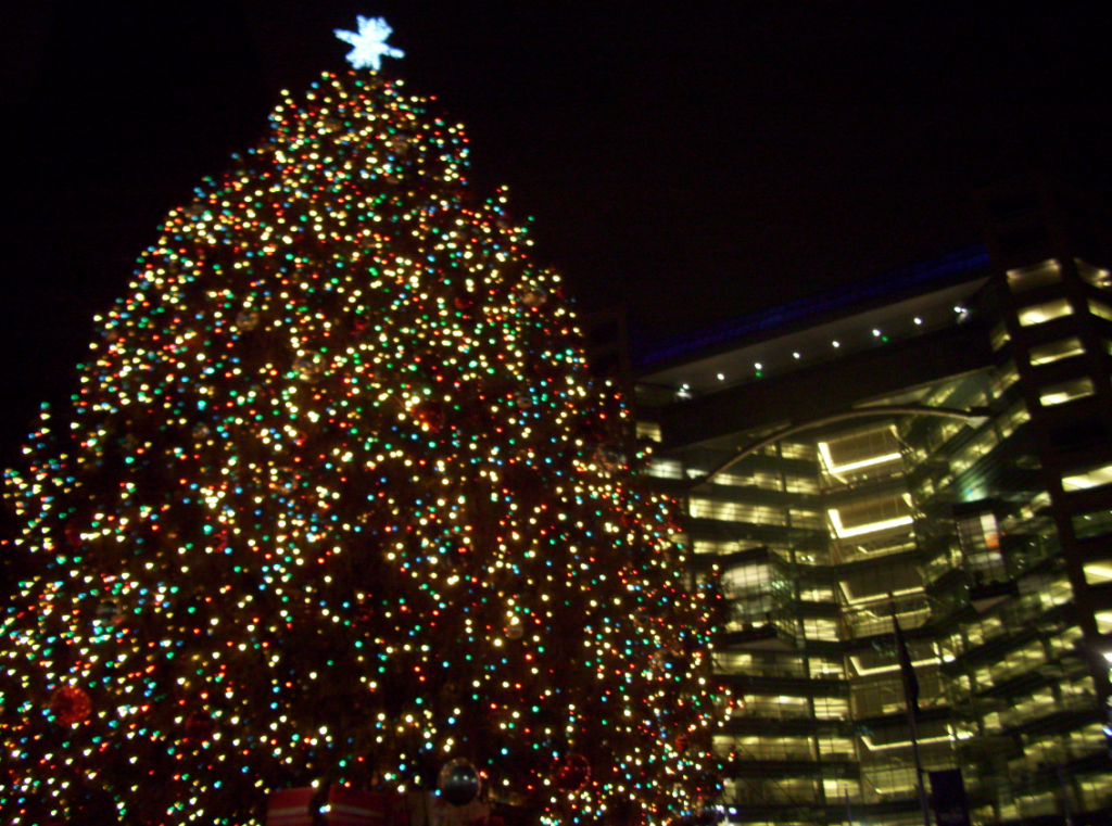Campus Martius Tree Lighting Detroit - Quicken Loans Zing Blog