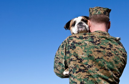 iStock 000016330140XSmall Service Dog Regulation Amended by the VA