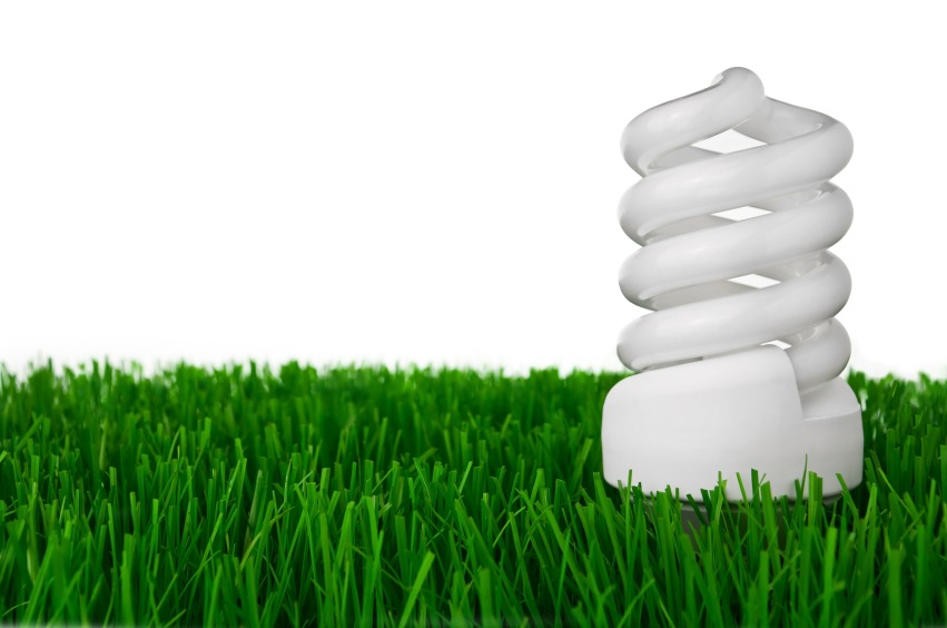 iStock Energy Efficient Light Bulb ENERGY STAR Labels: What You Need to Know