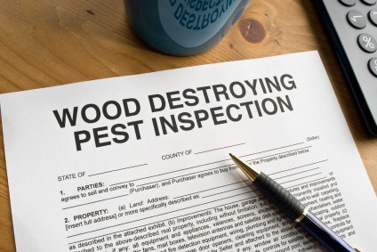 Getting a VA Mortgage: Pest Inspection Requirements - Quicken Loans Zing Blog