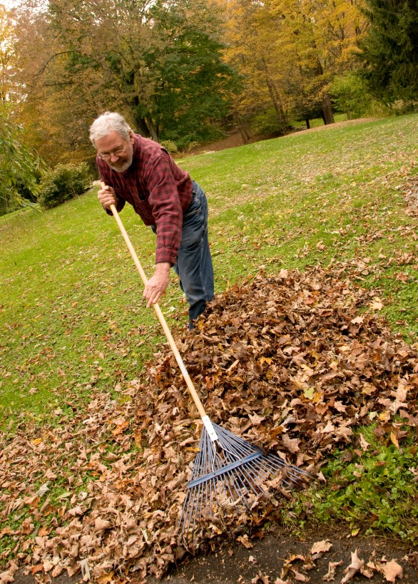 Pre-Winter Groundskeeping in 5 Easy Steps - Quicken Loans Zing Blog