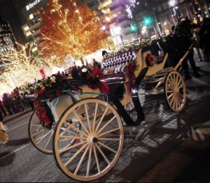 Horse and Carriage - Quicken Loans Zing Blog
