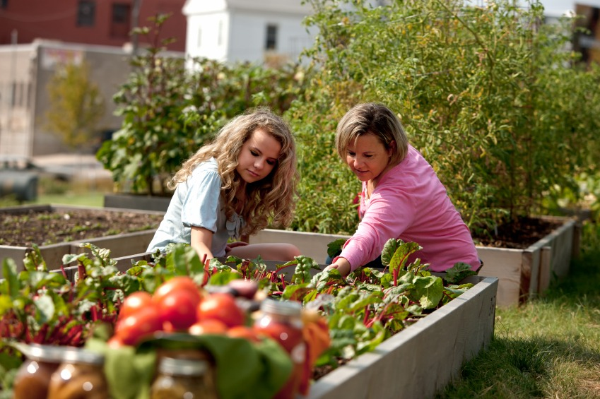 Spring Gardening Tips After an Awful Winter - Quicken Loans Zing Blog