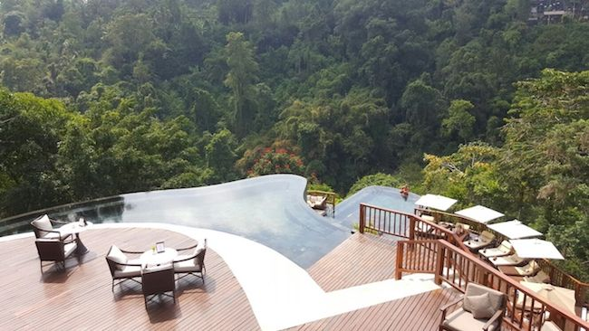 roof top view in a tropical forest.