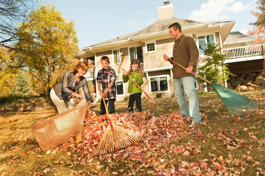 Prep Your Lawn Now for Better Looking Grass Next Spring - Quicken Loans Zing Blog