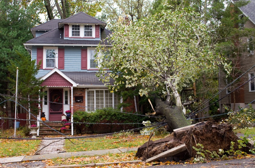 Keep Yourself Safe and Stay Smart in the Event of Disaster - Quicken Loans Zing Blog