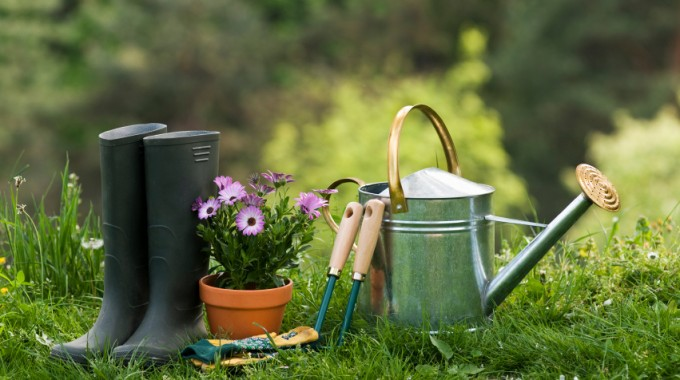 Must-Have Garden Tools For Homeowners