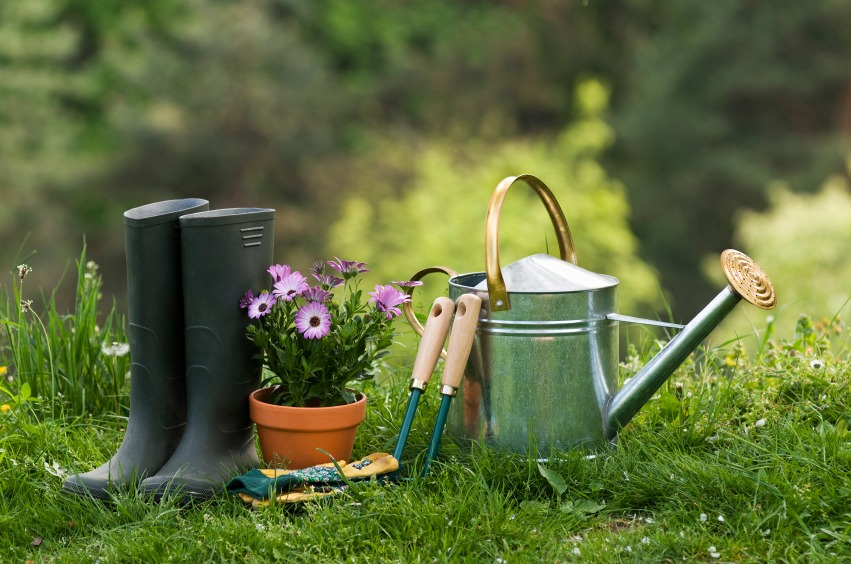 Gardening Tools In A Yard