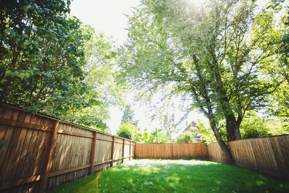 backyard fences