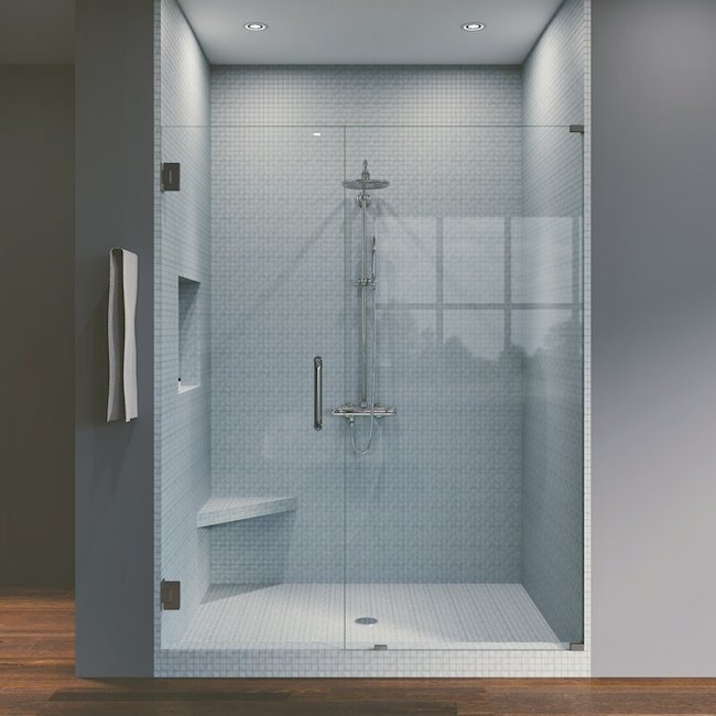 Seamless shower door product image.