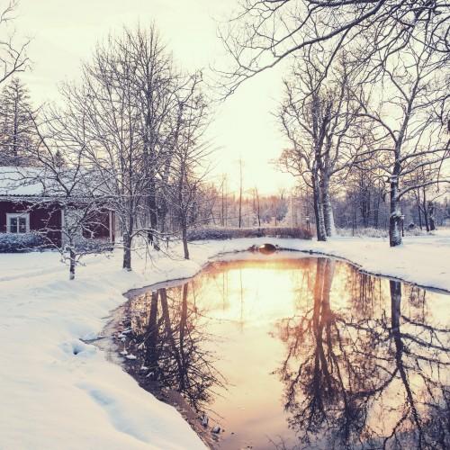 Winter Home Scene