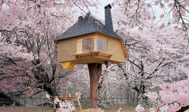 Treehouses Aren't Just for Kids - Quicken Loans Zing Blog