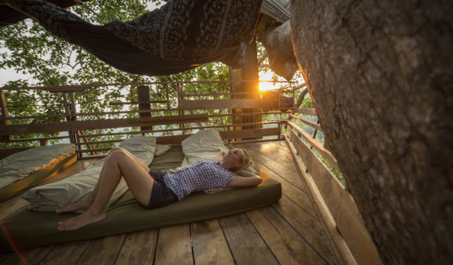 Treehouses Aren't Just For Kids