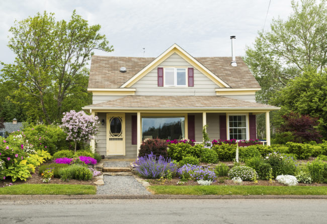 quaint house with garden