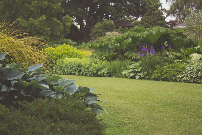 Five Tips for Environmentally Friendly Landscaping - Quicken Loans Zing Blog - Five Tips For Environmentally Friendly Landscaping - ZING Blog By