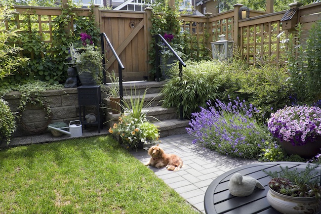 4 Landscaping Ideas For A Small Backyard Zing Blog By Quicken