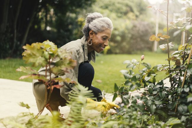 Older woman tending her garden.