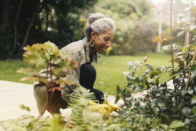 Older woman tending her garden.