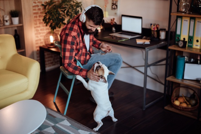 Man Petting Dog While Working From Home