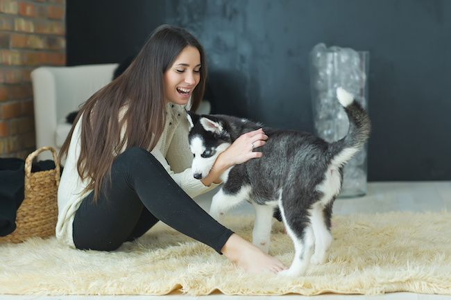 Woman playing with her dog in her living room.